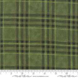 Moda Explore 19913 15 Pine Green by Deb Strain