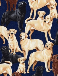 Timeless Treasures GM-C3240 Labradors